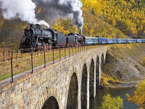 Tren transineriano